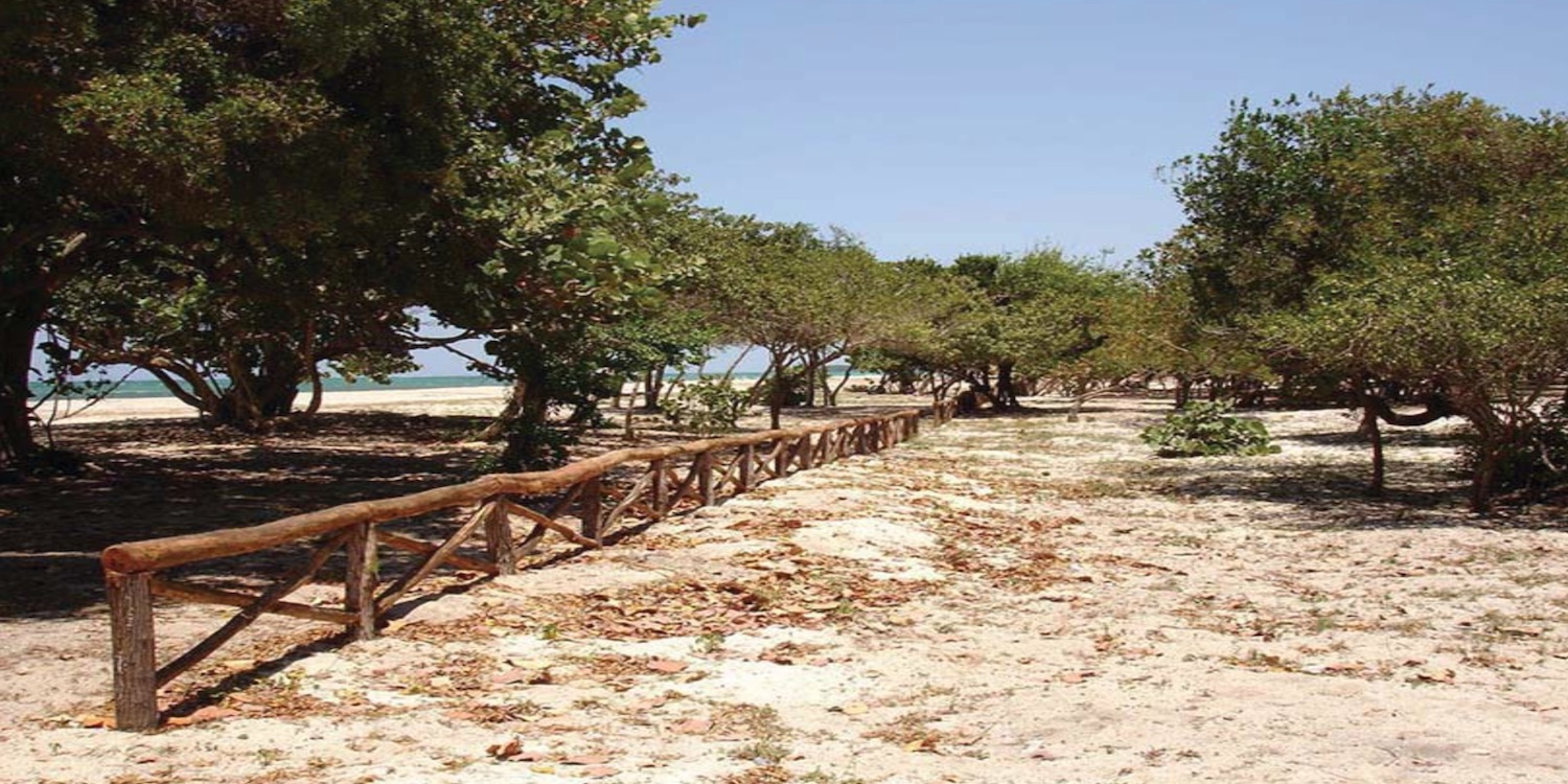Beachfront Property for sale: With 2.4 KM beach front area